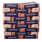 Penetron Grout  pallet 72 sacos